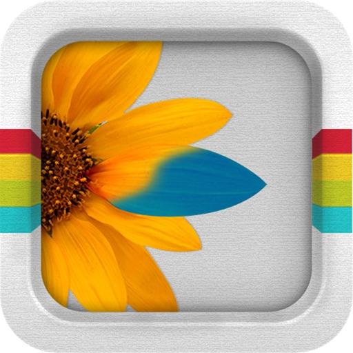 图层模板:Filter Splash【图片特效】