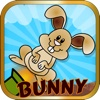 Bunny Bazooka: Animal Cannon Series