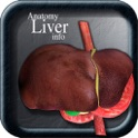 Anatomy Liver Info vii icon