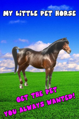 A Little Pet Horse screenshot 1