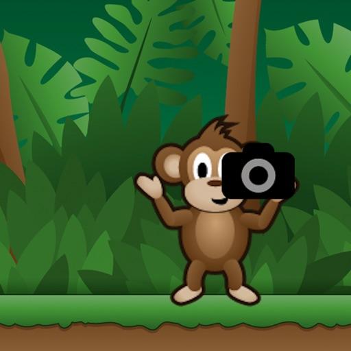 Safari Photo iOS App