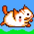 Flappy Cat Adventure - a nyan bird smash games for kids