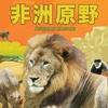 非洲原野 African Safari