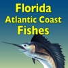 Guide to Florida Atlantic Coast Fishes