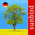 Baum Id Germany icon