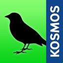 Vögel Europas bestimmen - was fliegt denn da