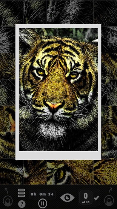 download Picture Puzzler - Animals apps 1