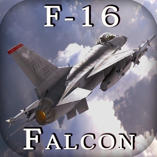 F 16 (戦闘機)の画像 p1_24