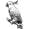 Parrots Sticker Pack Wiki