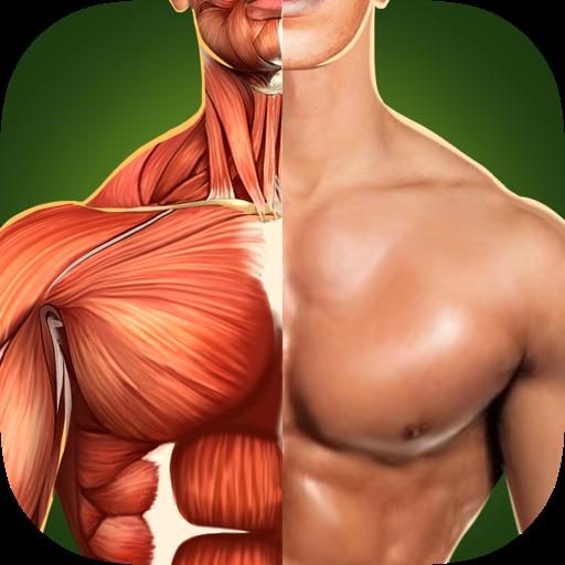 Human Anatomy 3D Pro - Твоё Здоровое Тело