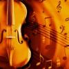 Easy Violin Tuner / Stimmgerät für die Geige