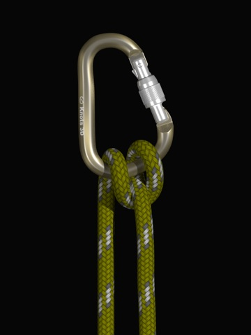 Knots 3D screenshot 2