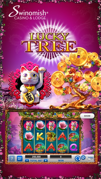 Swinomish casino slots