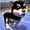 Puppy Evolution: The Dog Runner PRO