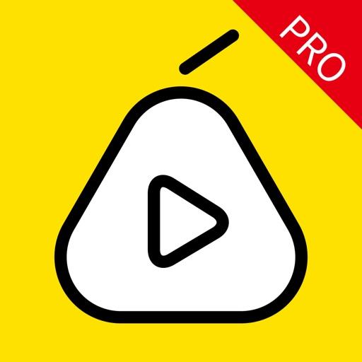 梨视频(专业版)-轻松有趣有料的娱乐·新闻·资讯短视频