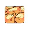 Cute Raccoon Stickers Wiki