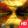Autumn Wallpapers   Theme & LockScreens
