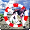 Dog Runner : 3d Sub-way Race