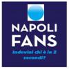 Napoli Fans Calcio Wiki