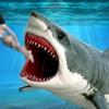 Wild Shark Attack & Scuba Diving: Deadly Ocean