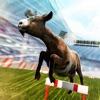 You Goat It! . Crazy Fun Race PRO