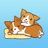 Husky Dog - Cute animated Stickers for iMessage