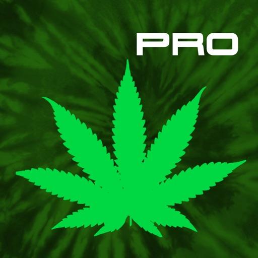 Cannabis News Pro iOS App