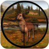 Animal Hunting Adventure Wiki