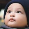恒星育婴室 Wiki