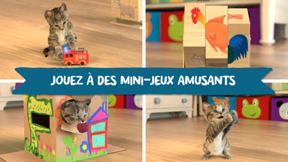 download Little Kitten - mon chat préféré apps 1