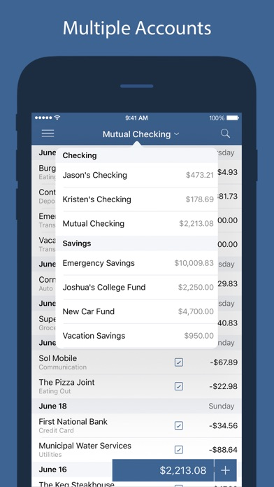 Screenshot #8 for Numero - Personal Finance Manager