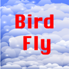 Anh Kha Ho Nguyen - Bird Fly App artwork