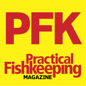 Practical Fish Keeping Magazine (pfk) Hints Tips app review