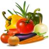 環保素食料理