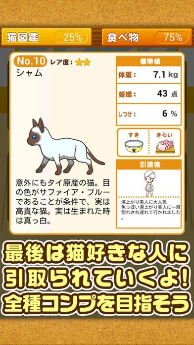 ねこカフェ~猫を育てる楽しい育成ゲーム~のスクリーンショット5