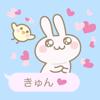 Balloon rabbit Wiki