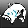 Netfish - Fishing Forecast Guide and Rewards App