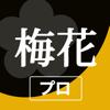梅花キットプロ - 御詠歌の旋律アプリ プ...