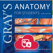 Gray's Anatomy Flash Cards (Hot Spots and Q&A)
