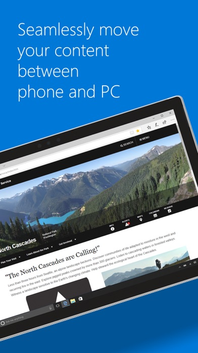 Microsoft Edge screenshot 2