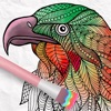 Animals Coloring Book 2018