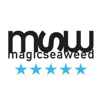 MSW Surf Forecast