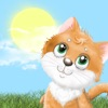 Метео кот