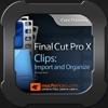 Clips, Import & Organize 101