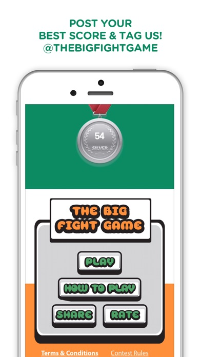 The Big Fight Game Screenshot