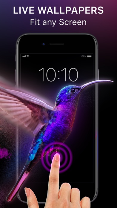 download Live Wallpapers & Backgrounds. apps 0