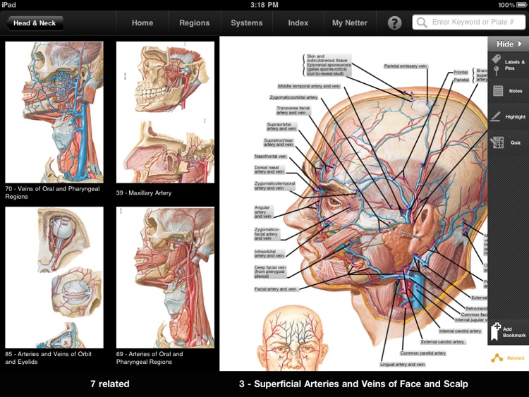 Netters Anatomy Atlas By Elsevier Inc