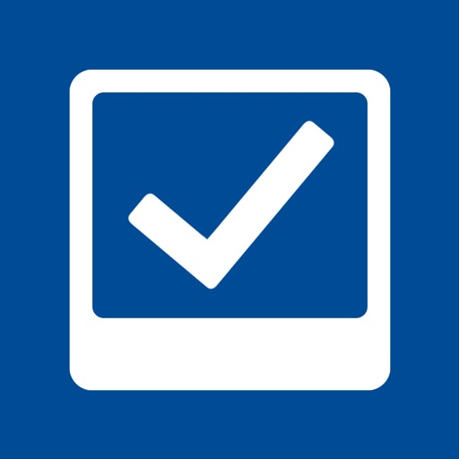 Snag List - 審核和報告