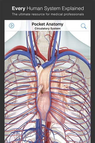 Pocket Anatomy. screenshot 2