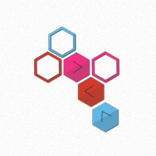 Hexagons Move Puzzle
